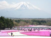 yamanashiimage01